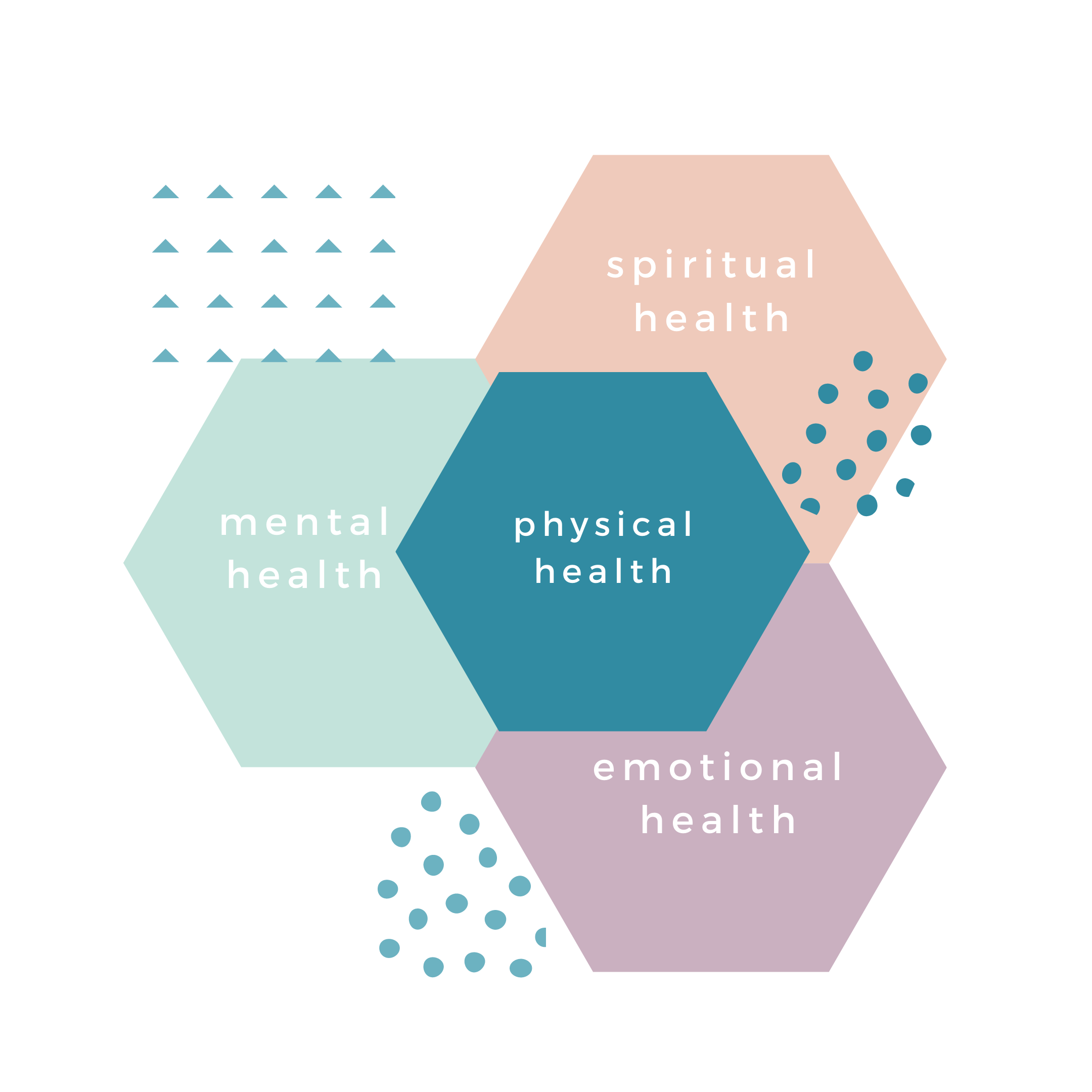 holistic health hexagon image